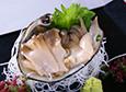 활호나무 생선회